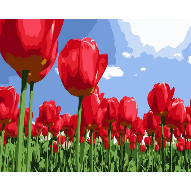 Kit pictura pe numere cu flori, Rise and shine