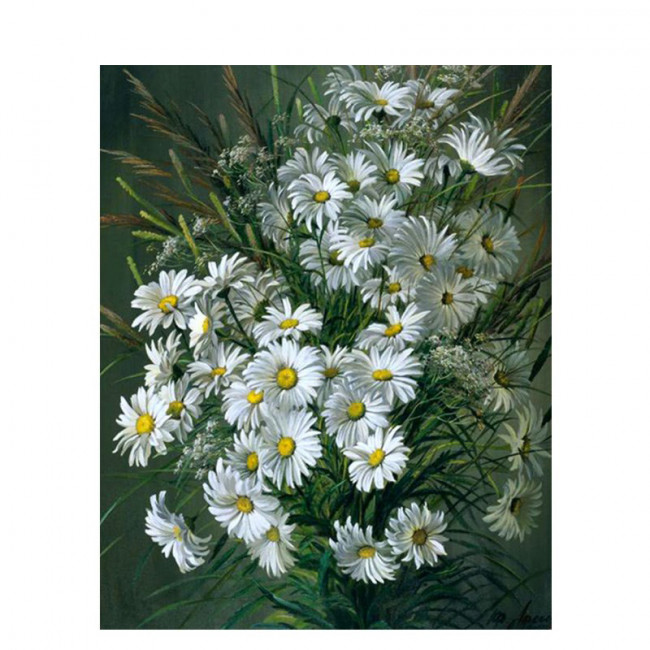 Kit pictura pe numere cu flori, Wild and white flowers