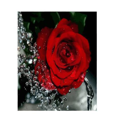 Kit pictura pe numere cu flori, Water drops