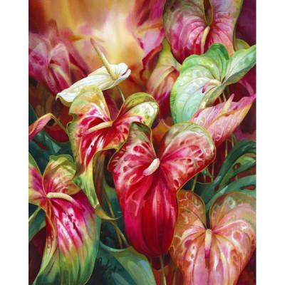 Kit pictura pe numere cu flori, Beautiful calla