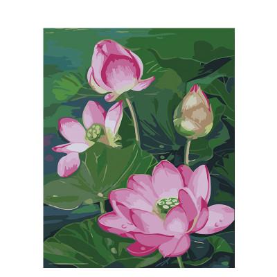 Kit pictura pe numere cu flori, Pink waterlily