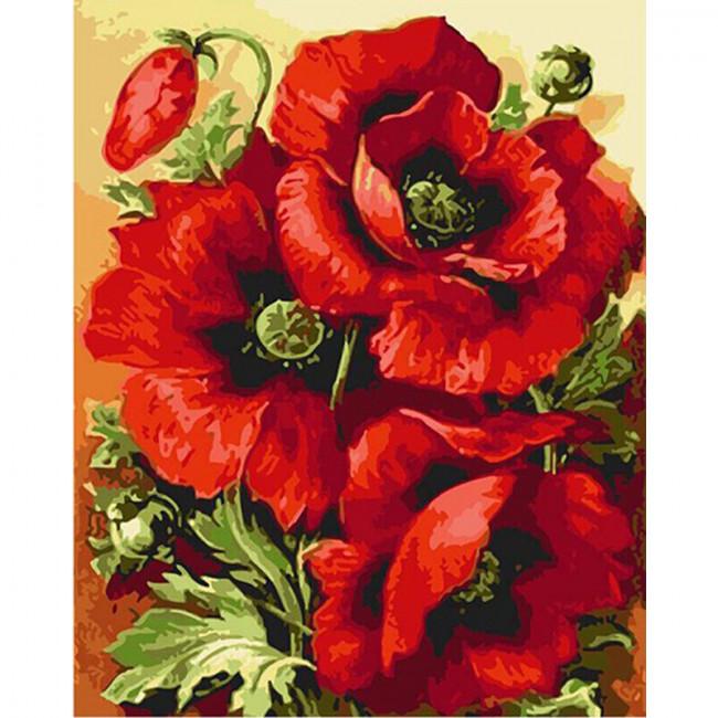 Kit pictura pe numere cu flori, Red Poppies