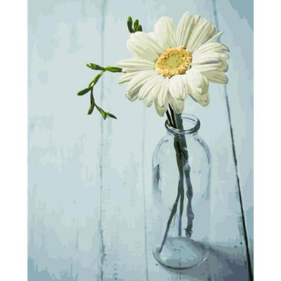 Kit pictura pe numere cu flori, DTP1880