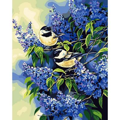 Kit pictura pe numere cu flori, Love Birds