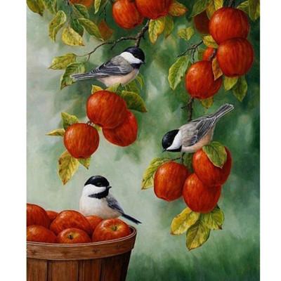 Kit pictura pe numere cu flori, DZ1163