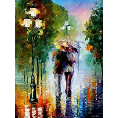 Kit pictura pe numere cu oameni, Caught in the Rain