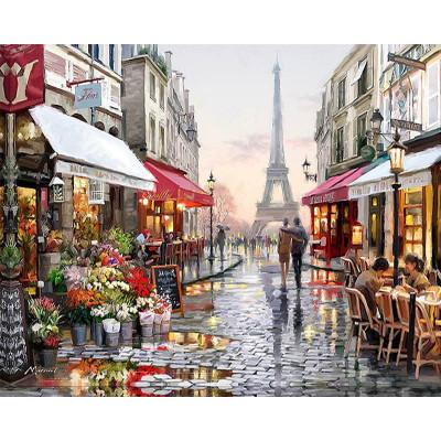 Kit pictura pe numere cu orase, La Vie en Rose