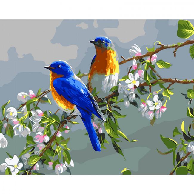 Kit pictura pe numere cu pasari, Bird Couple
