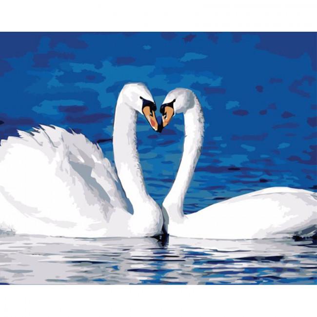 Kit pictura pe numere cu pasari, Swan Love