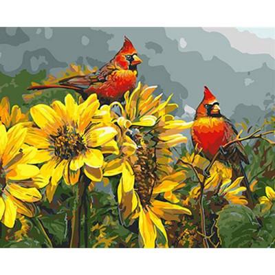 Kit pictura pe numere cu pasari, Freedom of the wild