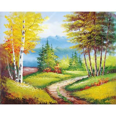 Kit pictura pe numere cu peisaje, DTP2425