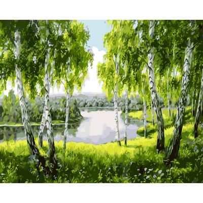 Kit pictura pe numere cu peisaje, Australian Green