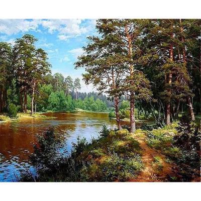 Kit pictura pe numere cu peisaje, Australian Wilds