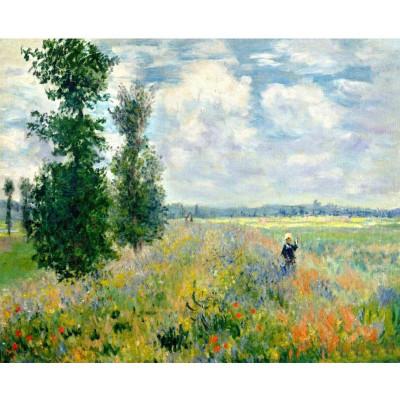Kit pictura pe numere cu personalitati si picturi celebre, Poppies by Claude Monet