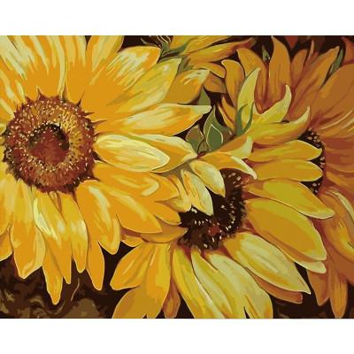 Kit pictura pe numere cu flori, DZ1702