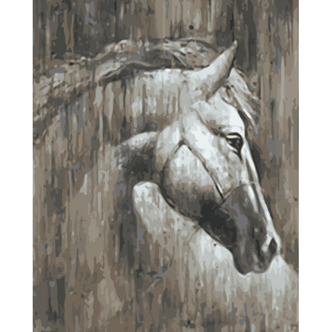 Kit pictura pe numere cu animale, NDTP-022
